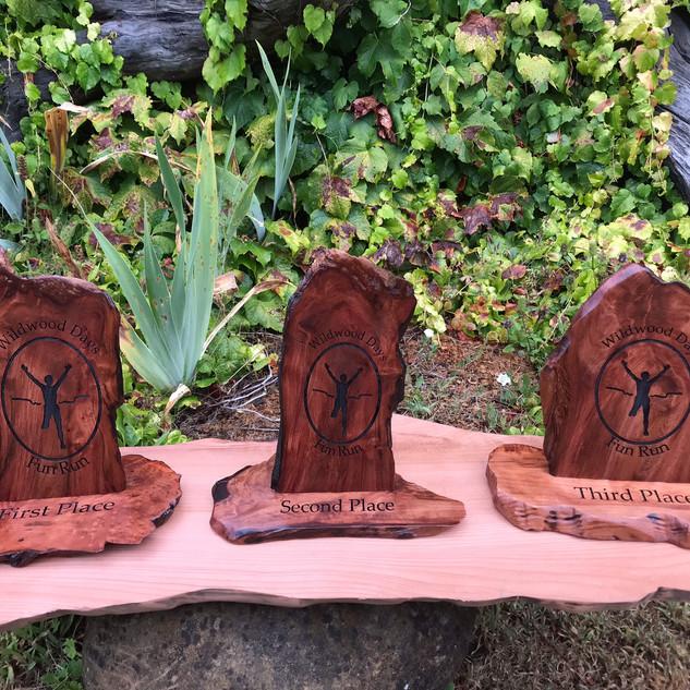 Standing Redwood Awards