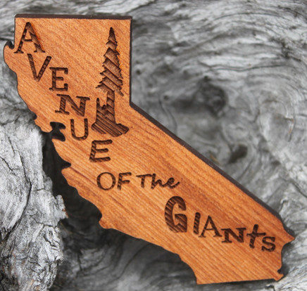 Redwoodmagnet.jpg
