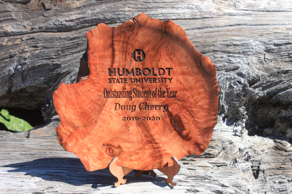 redwoodplatteraward.JPG