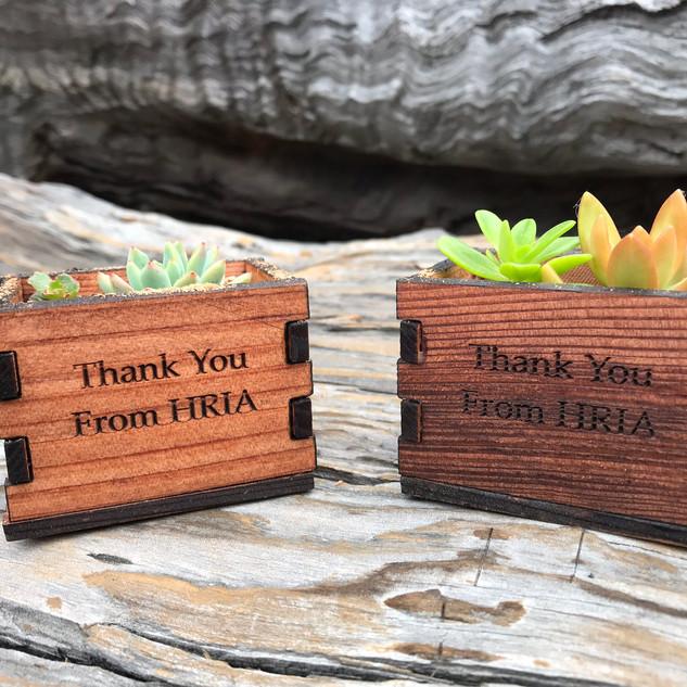 Succulent Planters Engraved