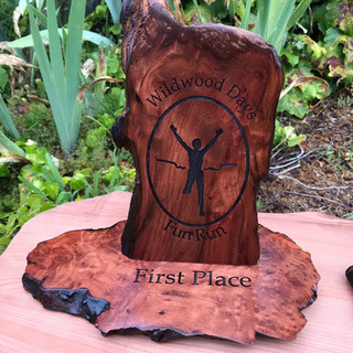 Standing Redwood Award