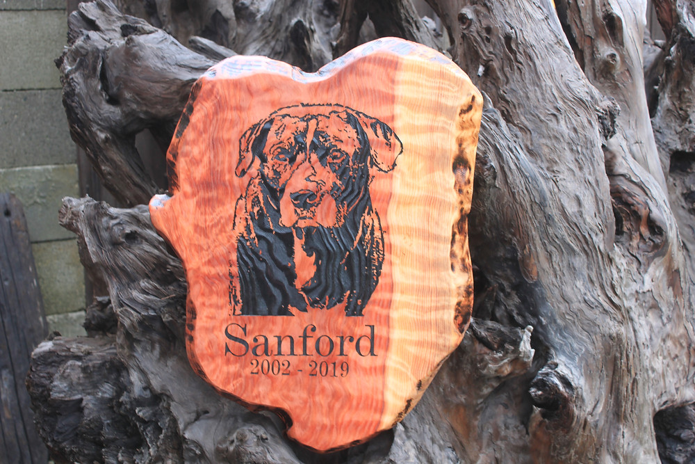 Engraved, live edge curly redwood memorial plaque.