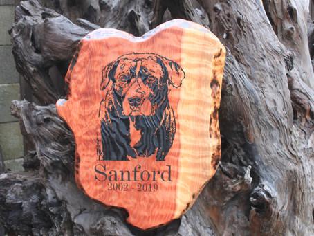 Engraving on Redwood