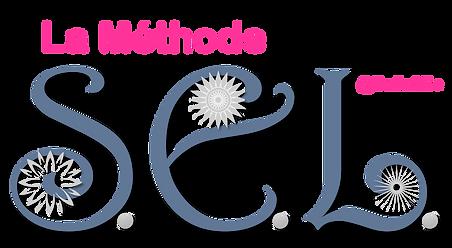 logo méthode sel b2b (foncé).png