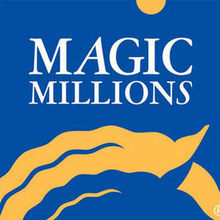 Magic Millions1.jpg