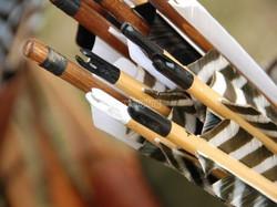 tb_tiro con arco tradicional