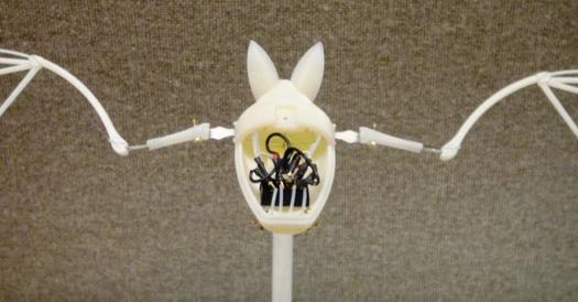 Fledermausroboter mit FGL-Antrieb