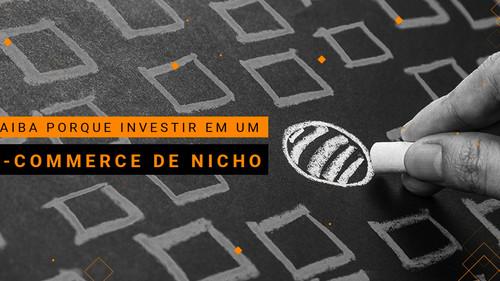 E-commerce de nicho: uma nova oportunidade para o seu negócio