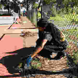 Lowell-Park-Cleanup