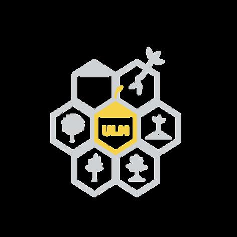 UL_Honeycomb_2-01 copy.png