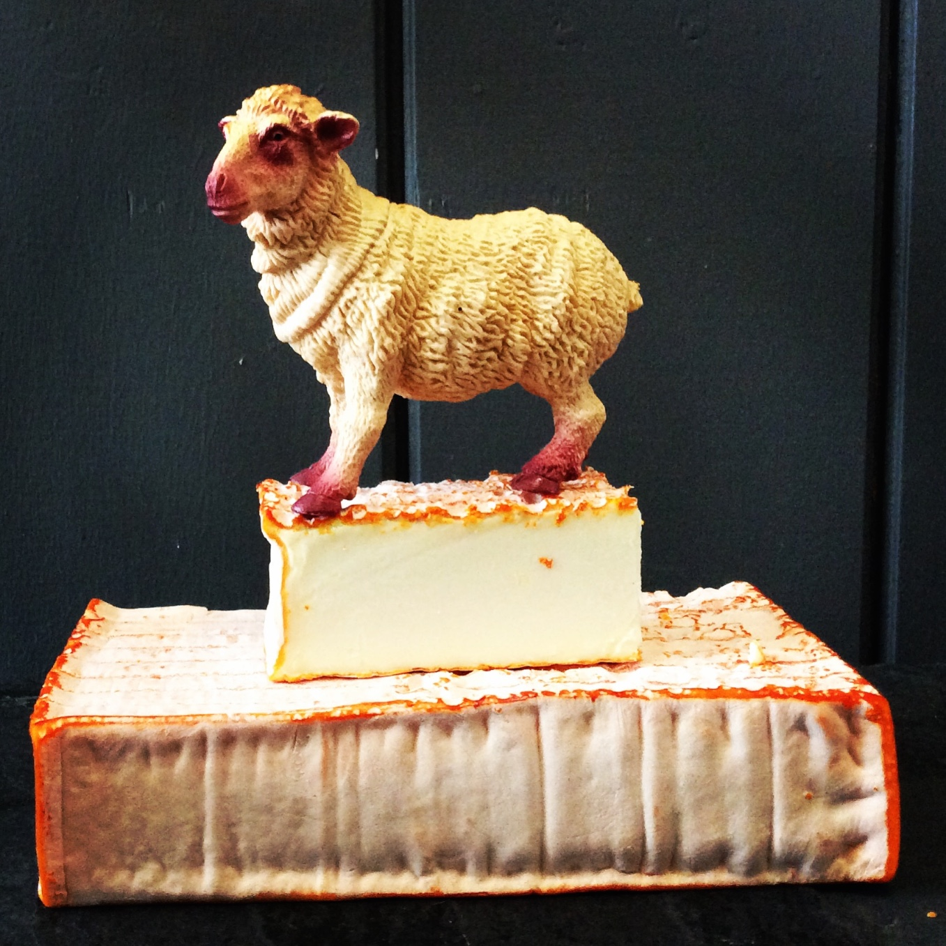 french sheep cheese 024