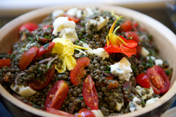 lentil dish with flowers