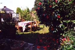 10 Palm Rd garden