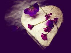 whitelake heart
