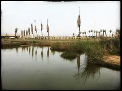 pantanos.villa - 10