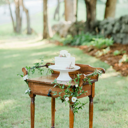 Dry Sink Cake Table