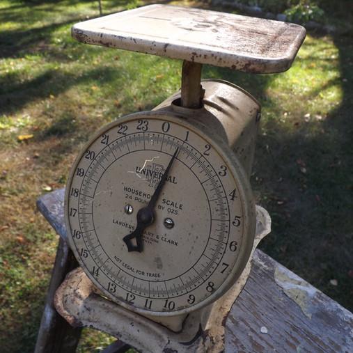 Farmhouse Scale