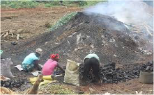 Local Charcoal Production in Liberia