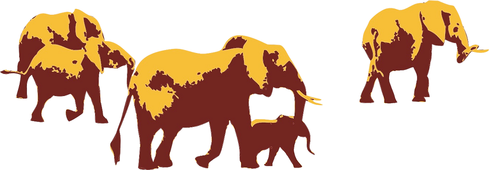Elephant Family blank.png