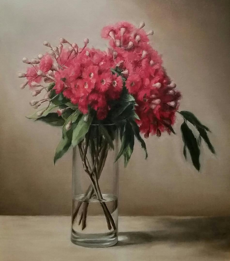 Flowering gum 3
