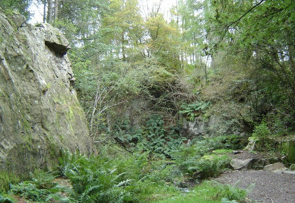 Inspirational Walks in Aberdeenshire Tollohill Wood Quarry