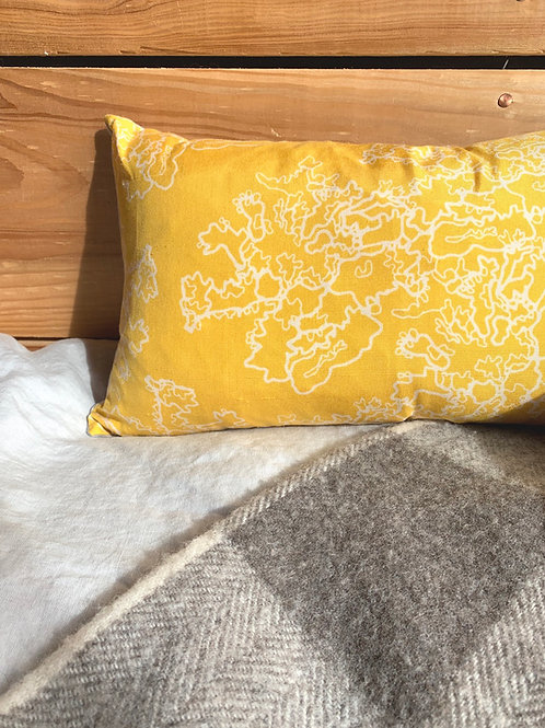 Lace Lichen Cushion