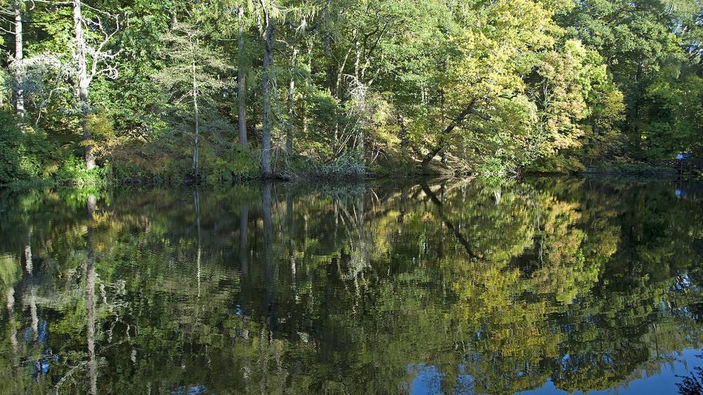 Inspirational Walks in Aberdeenshire Crathes Pond