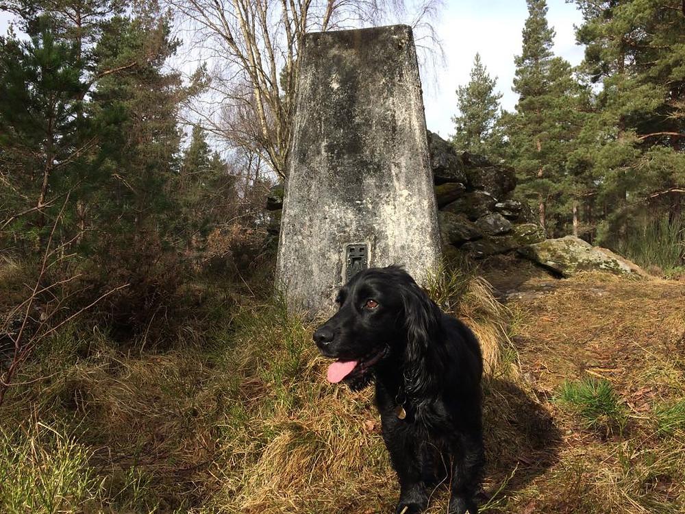 Inspirational Walks in Aberdeenshire Craigmore Trig Point