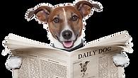 Hund mit Zeitung.png