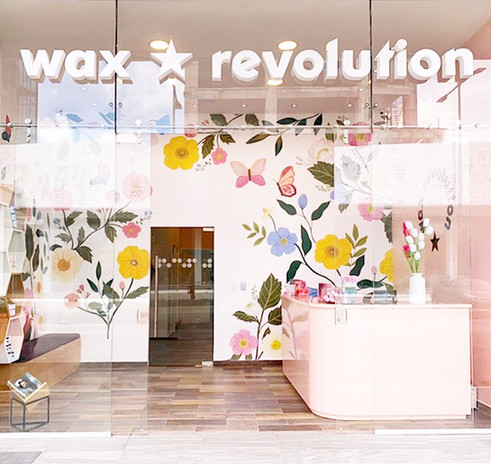 Wax Revolution / Illustrations for Wax S