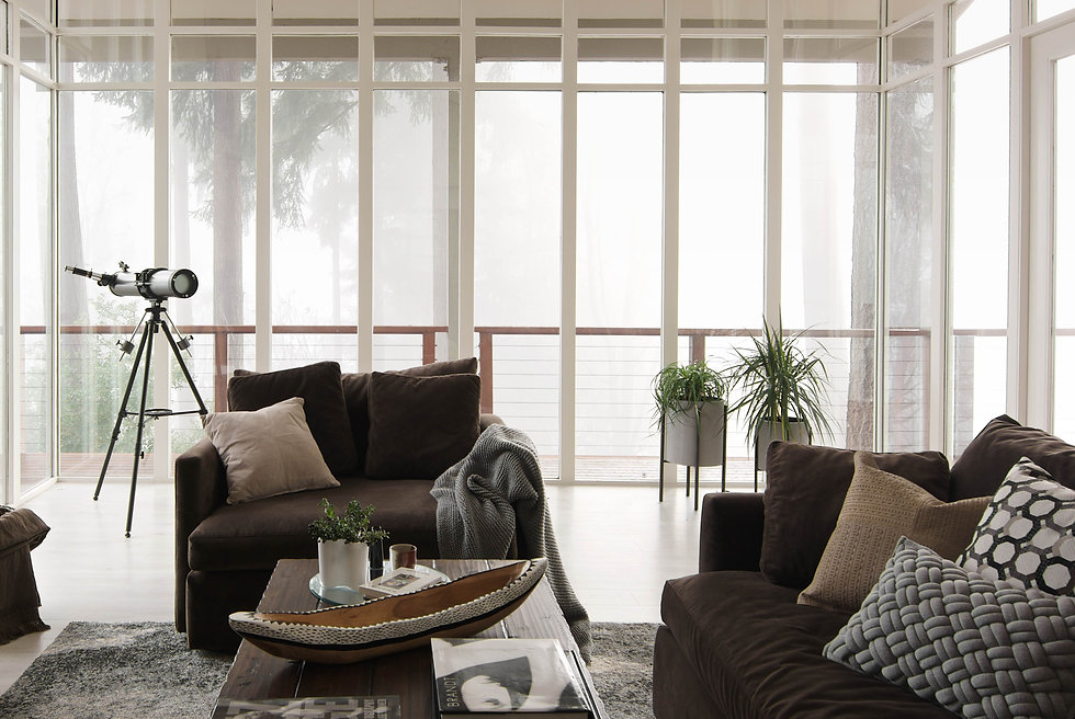 mdern living room inspiration