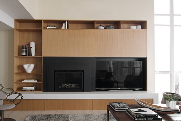 contemporary living roo with fireplace
