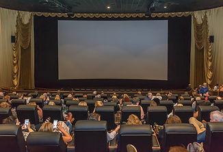 Film Festival2.jpg