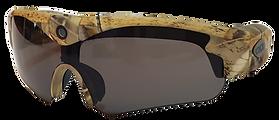 sunglasses2.png