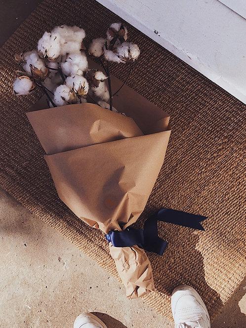 Cotton Bunch