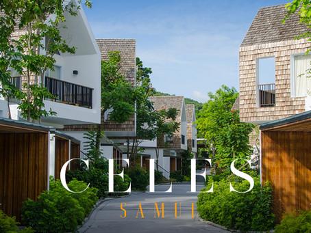 [รีวิว] CELES SAMUI เซเลสที่พักสุดอาร์ต บรรยากาศริมทะเล บนเกาะสมุย