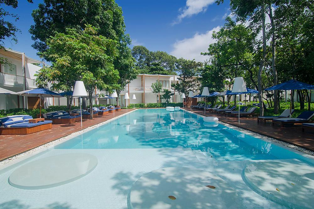 Garden Lap Pool