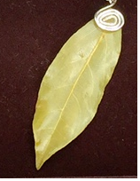 Single Bay Leaf necklace