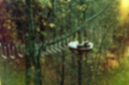 GraceChurch ZipLine2018 017_09R 1050 x 6