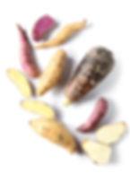 nutrioz roots vegetable chips taro potato