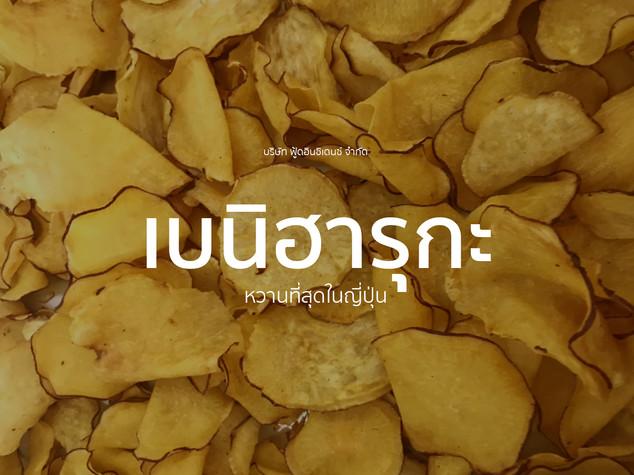 FINC_Cover_Beniharuka.jpg