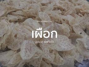 FINC_Cover_Taro.jpg