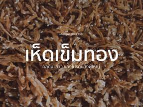 FINC_Cover_Mushroom.jpg