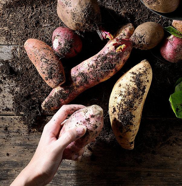 nutrioz root vegetable chips for daily diet snacks