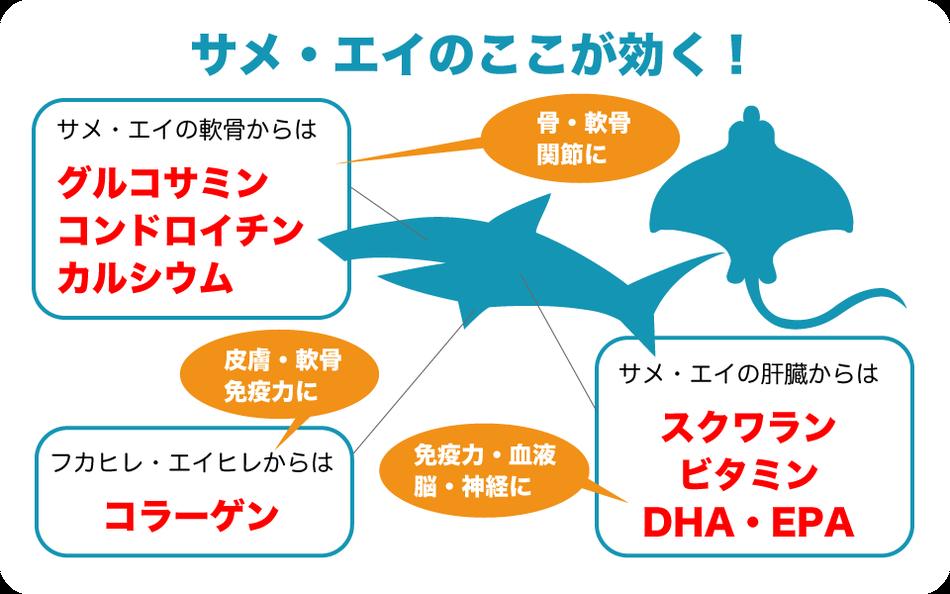 サメ・エイの栄養価 bau-bauの犬のおやつ・猫のおやつ