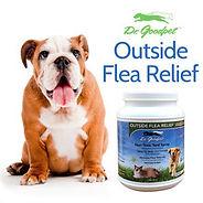 Outside Flea Relief