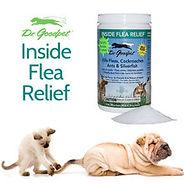 Inside Flea Relief