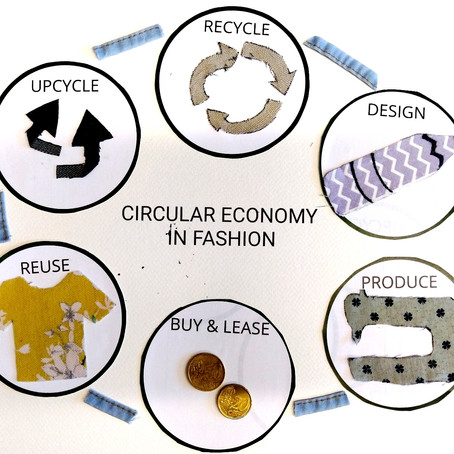 Circular Economy & Sustainable Fashion