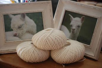 Rosebud Alpacas, Alpaca Yarn, Alpaca Fleece, Devon