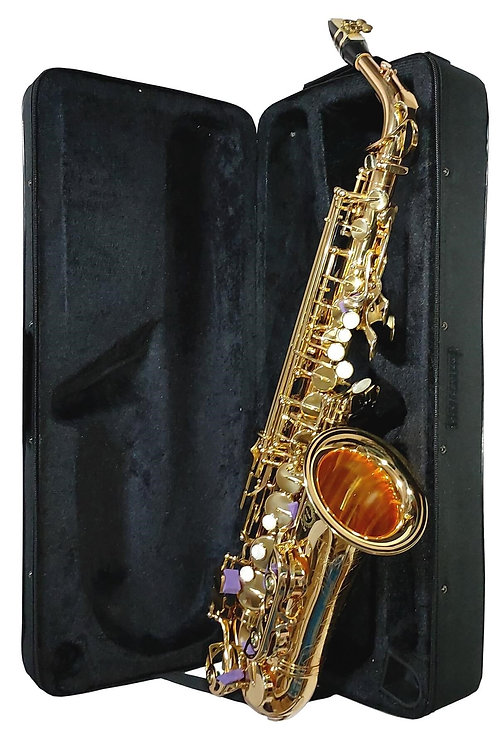 Bonson SF-8000 Gold Profesyonel Alto Saksafon Çanta ve Aksesuar Dahil (Mib)